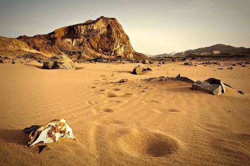 desierto pozo